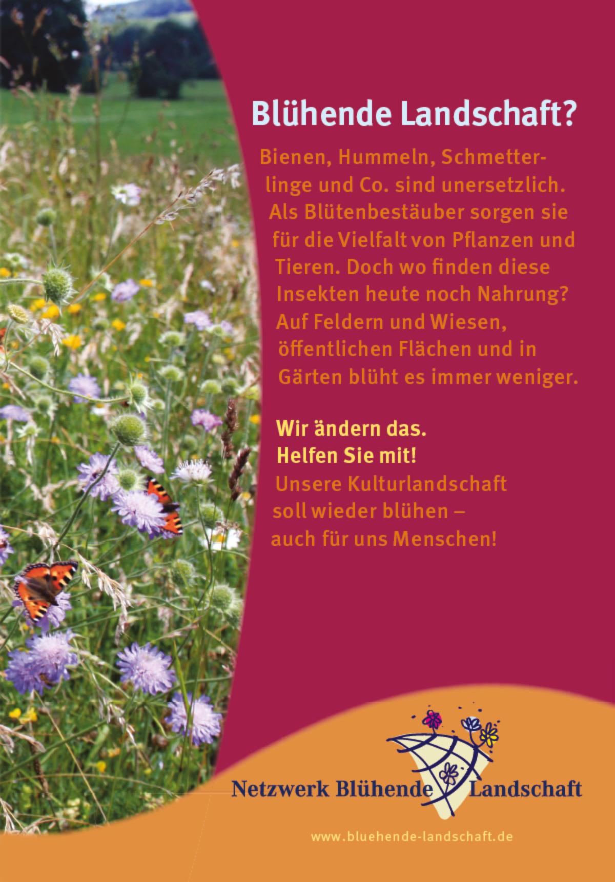 Flyer Netzwerk Blühende Landschaft - Mellifera e. V.