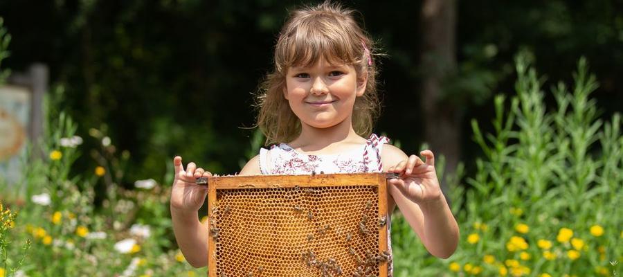 100 Jahre Waldorfschule –  und die Bienen feiern mit